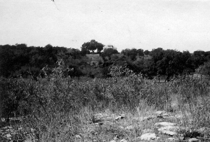 Built on top of a bluff overlooking Shoal Creek (camera looking west from existing San Gabriel/29th Streets)